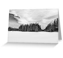 BW Fresh Snow Greeting Card