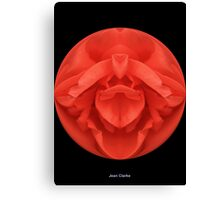 Spherical Red Rose  Canvas Print