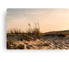 Coronado Sand Dunes at Dusk Canvas Print