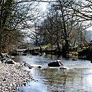Langdale Beck, Elterwater by mikebov