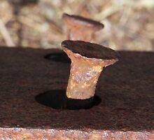 Rusty Spike by Martha Medford