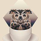 Caffeinimals: Owl by Lasse Damgaard