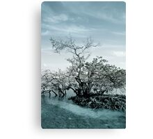Meet By The Water Canvas Print