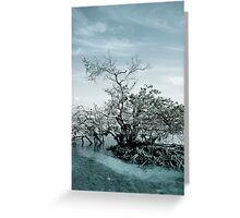 Meet By The Water Greeting Card