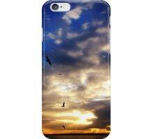 Birds in a Sunset iPhone Case/Skin