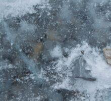 Ice & Rocks of Lake Ontario Sticker