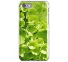 Lovely Lime iPhone Case/Skin