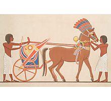 Vintage Egyptian illustration  Photographic Print