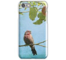 Finch Singing in Apple Tree iPhone Case/Skin