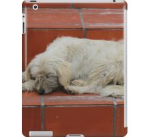 Dog Sleeping on Steps iPad Case/Skin