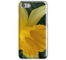 Lent-lily iPhone Case/Skin