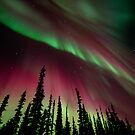 Magic Aurora Night II by Priska Wettstein