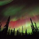 Magic Aurora Night I by Priska Wettstein