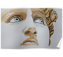 Michelangelo's David: Those Eyes! Poster