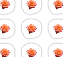 Orange Rose with Droplets Sticker