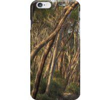 Wattle Grove January iPhone Case/Skin