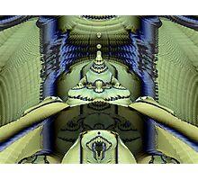 Spice Worms of Arrakis Photographic Print