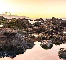 Sunrise: Red Rocks Walkway, Wellington, NZ by SeeOneSoul