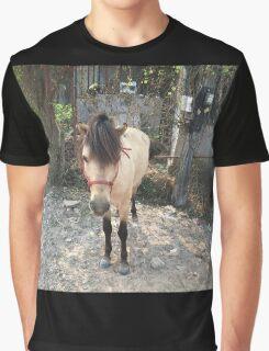 Buckskin Pony Graphic T-Shirt