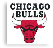 Chicago bull team Canvas Print
