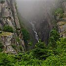 A Canyon View by Barbara  Brown