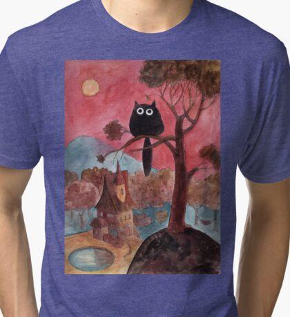 magical house Tri-blend T-Shirt