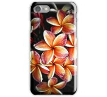 Colorful flower Plumeria or Frangipani iPhone Case/Skin