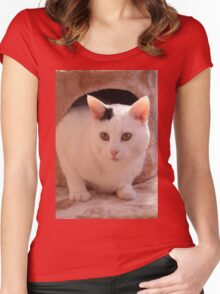 Black and White cat Women's Fitted Scoop T-Shirt