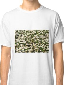 Small white flowers meadow. Classic T-Shirt