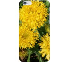 Yellow flowers in the garden. iPhone Case/Skin