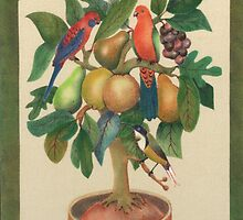 King parrot,rosella parrot, and honeyeater , in a potted tree,  by Mary Taylor
