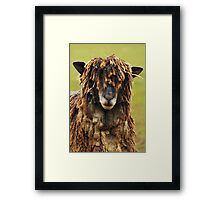 Dreadlock Farm  Framed Print