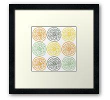 Colored fruit slices pattern Framed Print