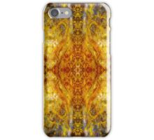 Phototapestry No. 30 iPhone Case/Skin