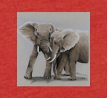 elephant friends Tri-blend T-Shirt