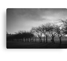 Evening at the Park Canvas Print
