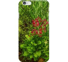 Impressions of Gardens - a Miniature Spring Creek with a Red Primrose  iPhone Case/Skin
