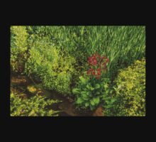 Impressions of Gardens - a Miniature Spring Creek with a Red Primrose  Kids Tee