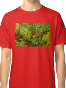 Impressions of Gardens - a Miniature Spring Creek with a Red Primrose  Classic T-Shirt