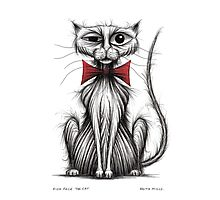 Fish face the cat Photographic Print