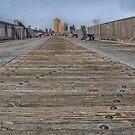 Down Low on the Boardwalk by John  Kapusta