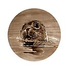 SEAL - sepia by ARTito