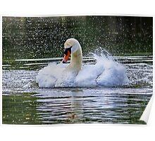 Splish Splash Taking a Bath Poster