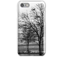 fog behind trees iPhone Case/Skin
