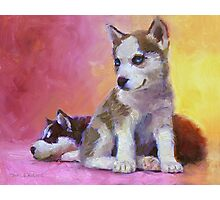 Husky Puppies - Canine Dog Painting Photographic Print