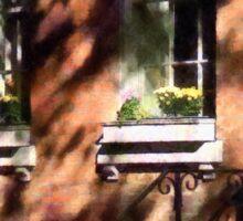 Manhattan NY - Window Boxes Greenwich Village Sticker
