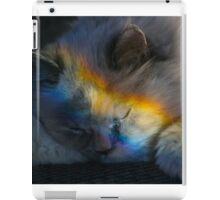 Napping in a Rainbow iPad Case/Skin