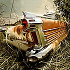 Abandoned 1958 Oldsmobile  by mal-photography