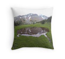 Washington Reflection Throw Pillow