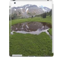 Washington Reflection iPad Case/Skin